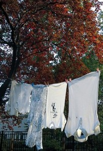 clothesline pic