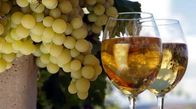 winepicseptember2014